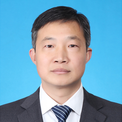 上海金桥律师